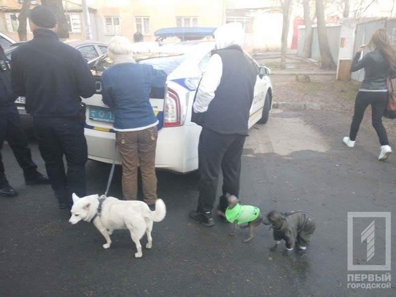 Бездомная собака зря доверилась одесскому догхантеру (ФОТО) (фото) - фото 1